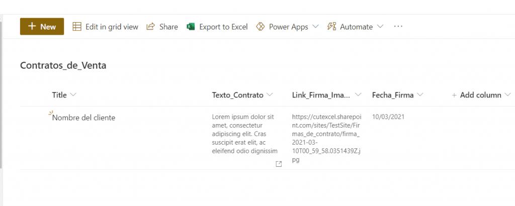Power Apps firma pen input 7